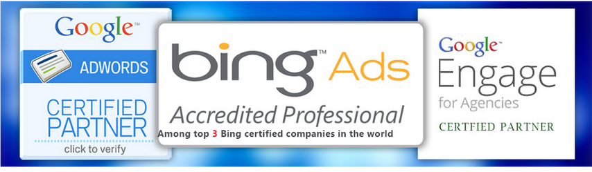 Techshu Google & Bing certified agency